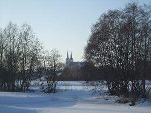 Obeliai žiemą. D. Smalinsko nuotr.